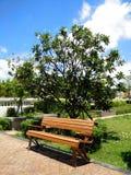 Houten stoel in de tuin Stock Afbeeldingen