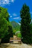 Houten stoelen in de tuin Royalty-vrije Stock Afbeeldingen
