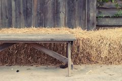 Houten stoelen in de tuin Royalty-vrije Stock Foto