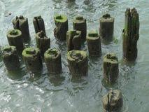 Houten structuren op een pijler langs rivier Stock Afbeeldingen