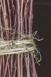 Houten takjes die met oud koord in bos, donkere achtergrond worden gebonden stock afbeeldingen