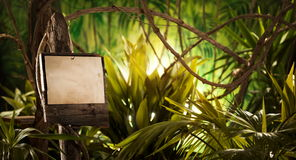 Houten teken in de wildernis Stock Foto