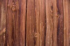Houten textuur Stock Fotografie