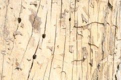 Houten Textuur Royalty-vrije Stock Afbeeldingen