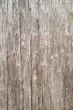 Houten textuur met natuurlijke oude pijnboom Stock Afbeelding