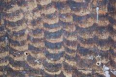 Houten Textuur oude panelen als achtergrond Royalty-vrije Stock Afbeelding