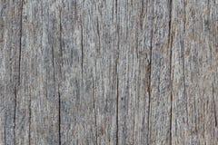 Houten textuur van macro Royalty-vrije Stock Afbeeldingen