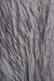 Houten textuurachtergrond Bruine houten textuur, oude houten textuur royalty-vrije stock afbeelding