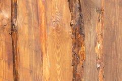 Houten textuurachtergrond Close-up van ruw houten fragment met kleurrijke oppervlakte als houten muurtextuur voor ontwerper stock afbeeldingen