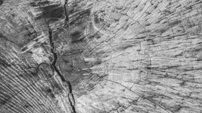 Houten textuurachtergrond monochromed Stock Afbeelding