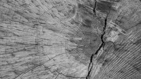 Houten textuurachtergrond monochromed Royalty-vrije Stock Foto's