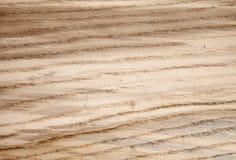 Houten textuureik Royalty-vrije Stock Foto