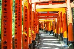 Houten Torii-Poorten dichtbij Kyoto, Japan Stock Afbeeldingen