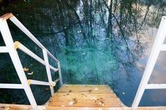 Houten trap die tot duidelijk blauw water in openlucht leiden stock afbeelding