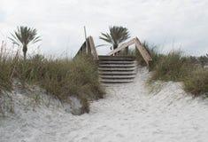 Houten treden over duinen bij strand royalty-vrije stock foto's
