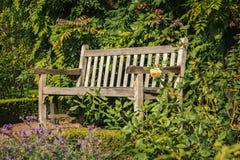 Houten tuinbank Stock Afbeelding