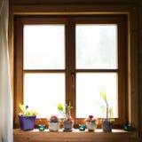Houten venster met bloemen stock foto