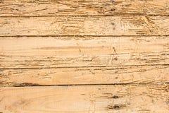 Houten vernietigde termieten Voor de achtergrond Royalty-vrije Stock Fotografie