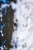 Houten verse geschilderde brug en voetafdrukken van vogels en mensen op een sneeuw royalty-vrije stock afbeelding