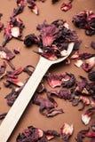 Houten verticale lepel en rode droge hibiscus, stock afbeelding