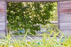 Houten vierkant kader op groene bladeren op de tuinachtergrond Ab Royalty-vrije Stock Fotografie