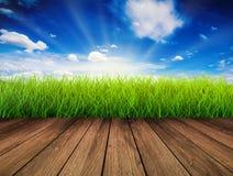 Houten vloer met groen gras royalty-vrije stock afbeelding