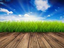 Houten vloer met groen gras stock foto