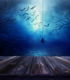 Houten vloer met spin en Halloween-achtergrond Stock Afbeelding