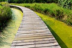Houten voetbrug Stock Afbeeldingen