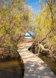 Houten voetgangersbrug die door bomen tot een zandig strand in Cors leiden Royalty-vrije Stock Foto
