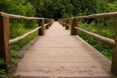 Houten voetgangersbrug in het bos Stock Afbeelding