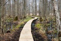 Houten voetgangersbrug in het moeras Stock Foto's