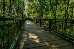 Houten voetgangersbrug in het park royalty-vrije stock afbeelding