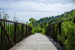 Houten voetgangersbrug op een gebied van de aardmilieubescherming Stock Foto