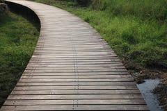 Houten voetgangersbrug over moerasland Royalty-vrije Stock Fotografie