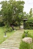 Houten voetpad in groene tuin Stock Foto
