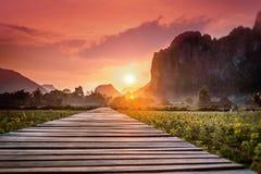 Houten voetpad op een gebied bij zonsondergang Berglandschap, Laos, Stock Afbeeldingen