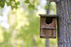 Houten vogelhuis Stock Foto