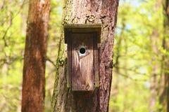 Houten vogelhuis royalty-vrije stock fotografie