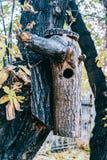 Houten vogelhuis op een boom stock fotografie