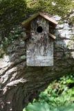 Houten vogelhuis op grote mos behandelde boomtak royalty-vrije stock foto