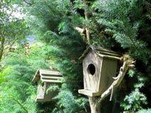 Houten vogelhuizen Royalty-vrije Stock Fotografie
