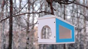 Houten vogelvoeder op de boom in het de winterpark De mening van de close-up stock video