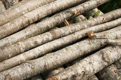 Houten voorbereiding De oude houten stokken Stock Foto