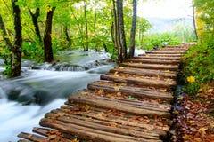 Houten weg in het nationale park van Plitvice in de herfst Stock Afbeeldingen