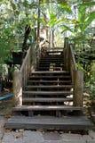 Houten weg, manier, spoor van planken in bospark, de achtergrond van het perspectiefbeeld stock fotografie