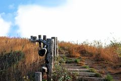Houten weg, manier, spoor van planken in gebiedspark, de achtergrond van het perspectiefbeeld Weergeven vanaf Klippenbovenkant Ke stock foto