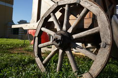 Houten wiel op een achtergrond van groen gras Royalty-vrije Stock Afbeeldingen