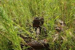 Houten wiel op een achtergrond van groen gras Stock Fotografie