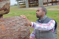 Houthakker die als houten boomstam klaar voor lumbermill controleren stock fotografie